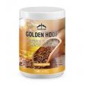 Golden Hoof Veredus