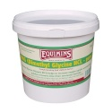 DMG (Dimethyl Glycine Pure) Equimins