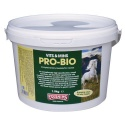 Pro-Bio Supplement Equimins
